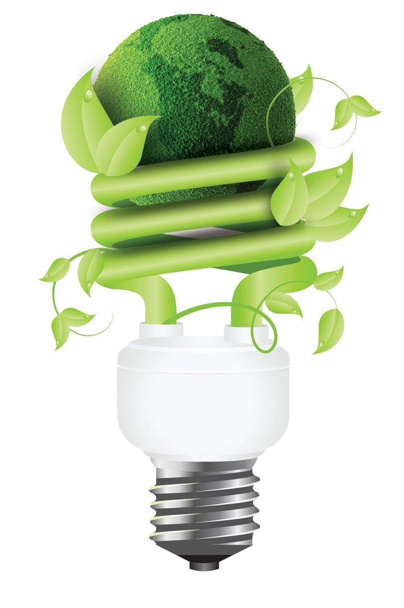 Lighting Products Consist Of Led And Cfl For Energy Efficiency